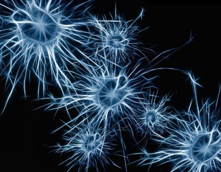 Memory loss-reversing electromagnetic cap could be Alzheimer's breakthrough