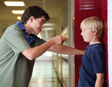 Bullying and those with learning disabilities