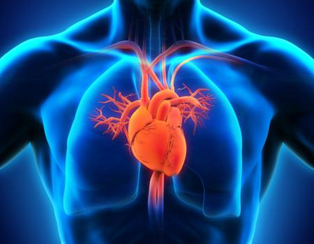 Women are more likely to be misdiagnosed after a heart attack