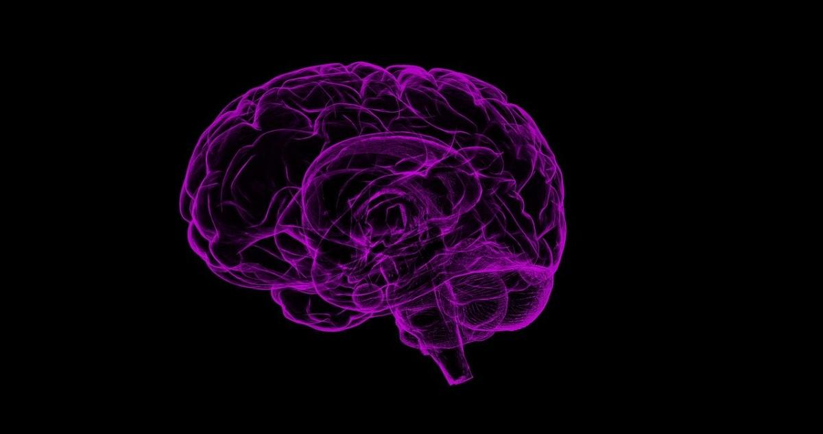 Researchers identify new target for Alzheimer's treatment
