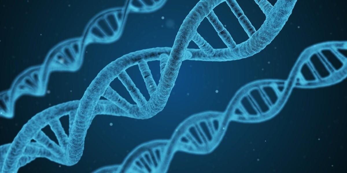 Scientists find gene variants that could lower Alzheimer's risk