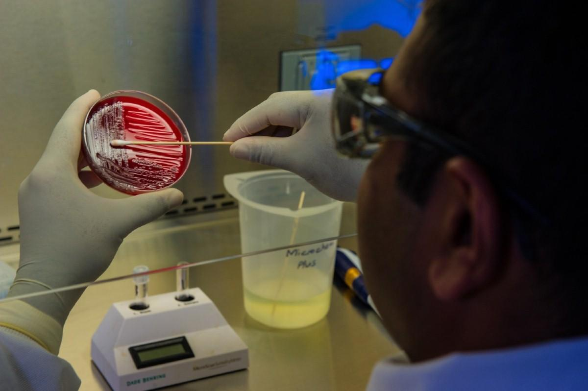 All over-65s with coronavirus symptoms are entitled to tests