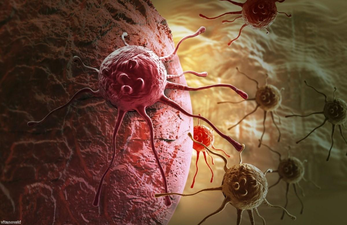 Doctors identify potential new treatment for pancreatic cancer