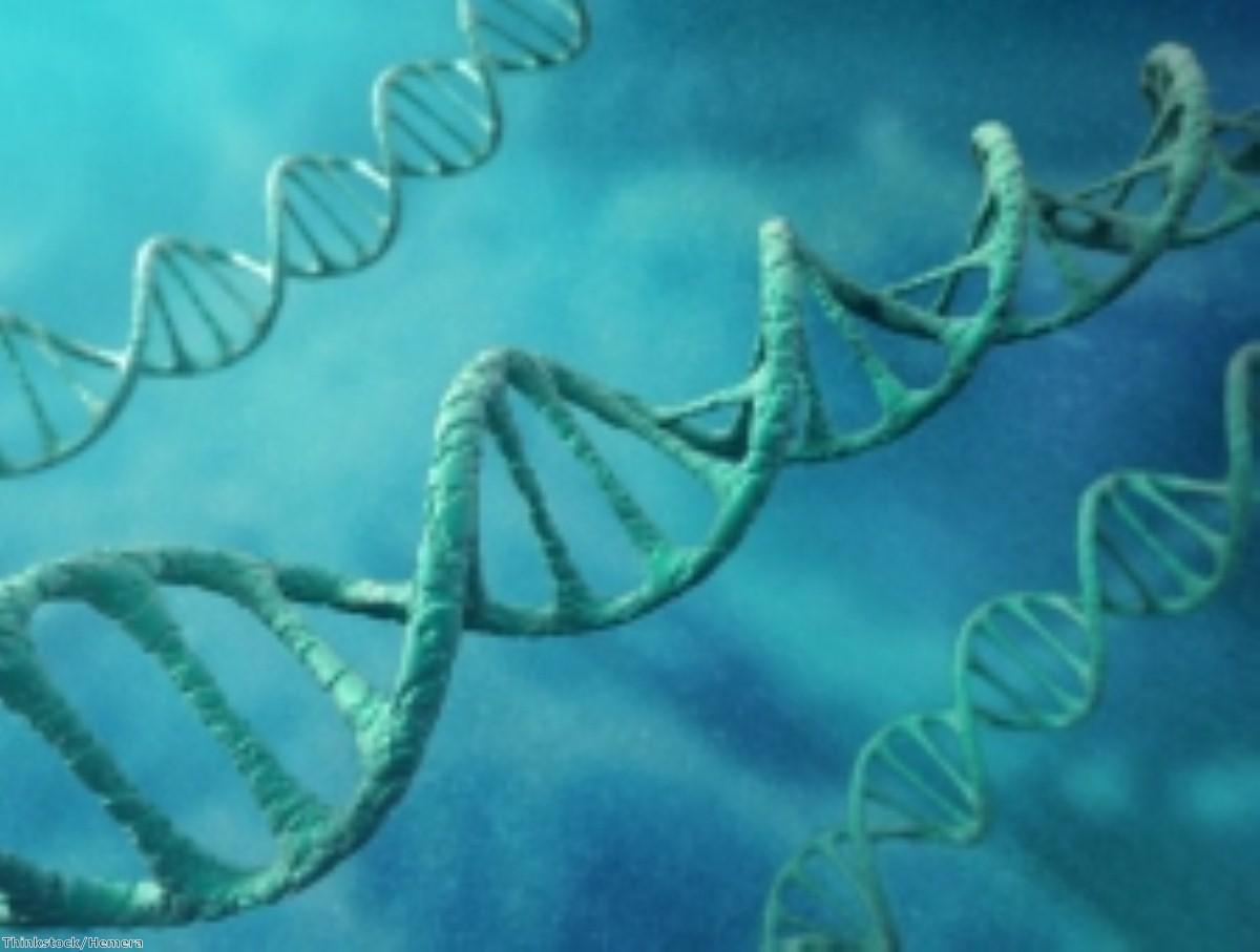 Does DNA modification play a part in Alzheimer's?