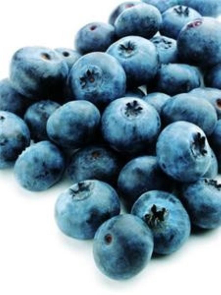 Parkinson's 'could be treated with blueberries'