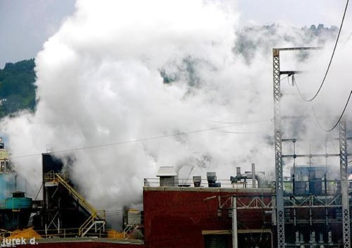 Metal pollution linked to Parkinson's disease
