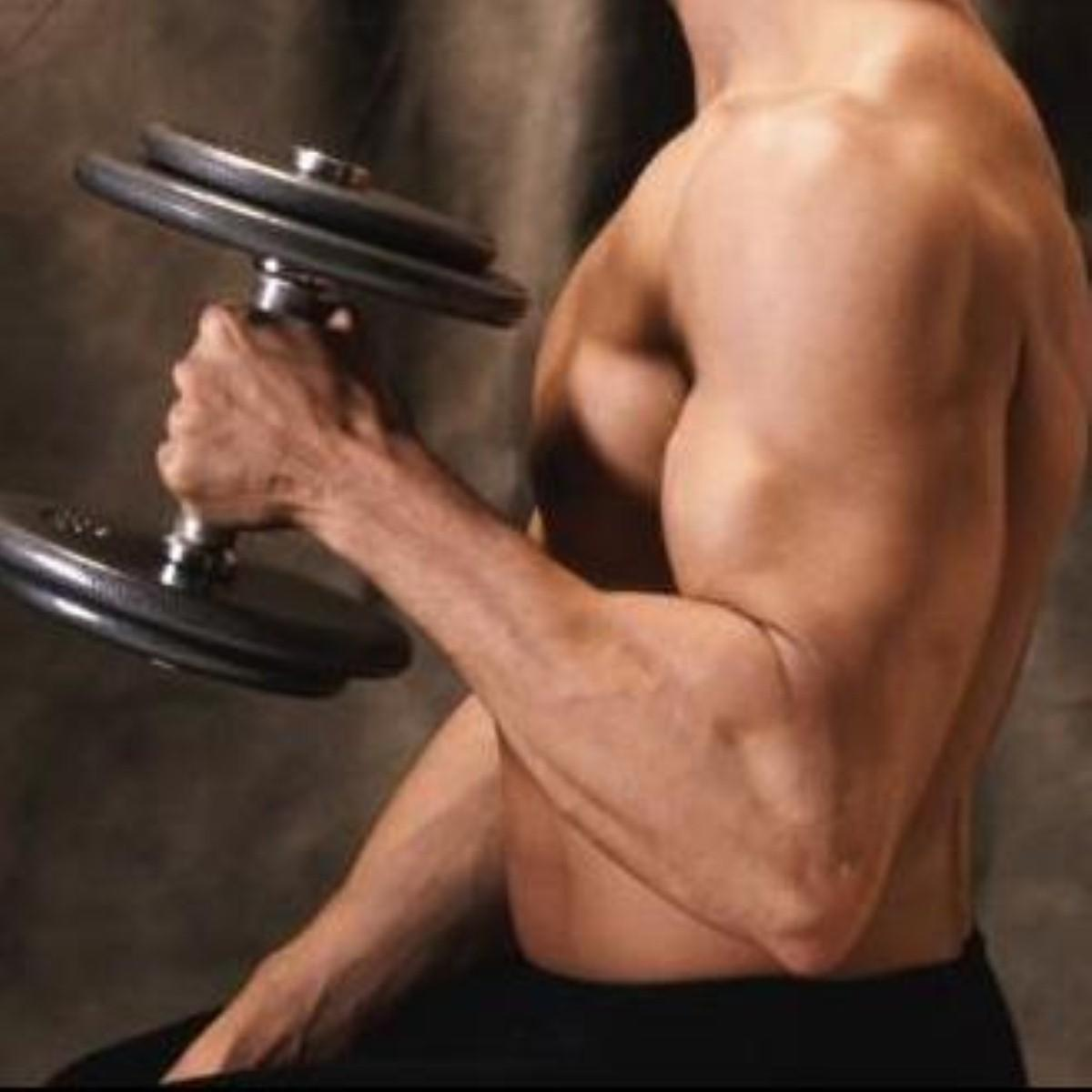 New drug to combat muscle wasting?