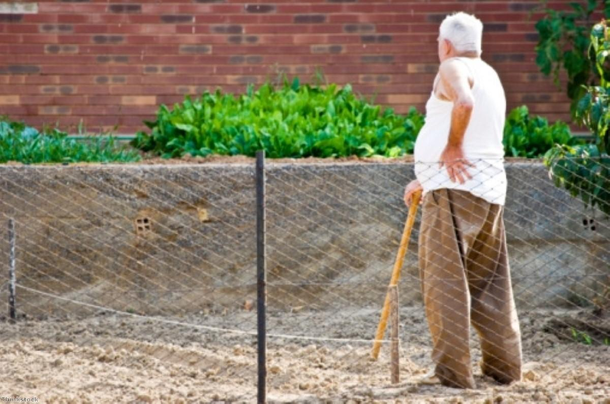 Ageing pathway discovery could prevent muscle degeneration