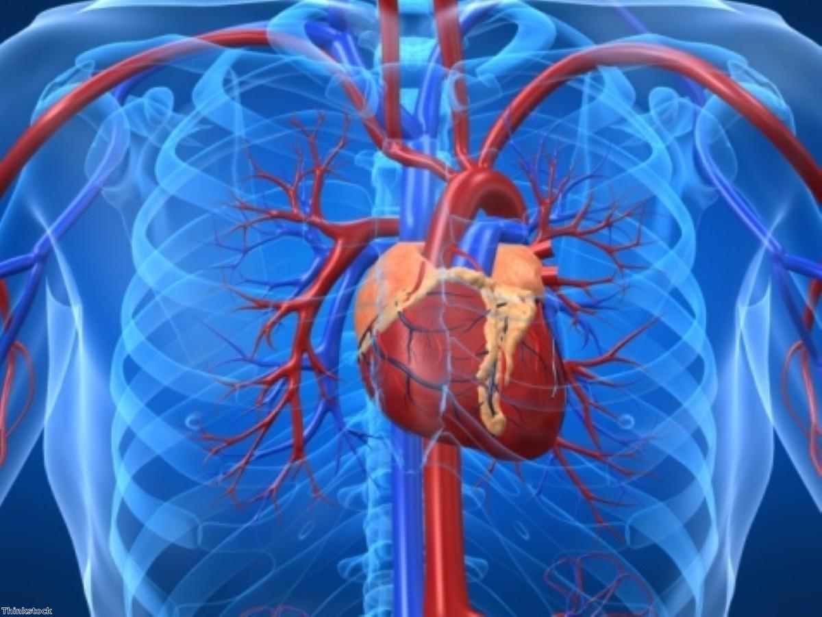 Injecting drug into coronary artery could reduce heart damage?