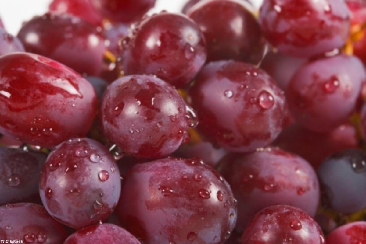 Grapes have benefits for male metabolic syndrome patients