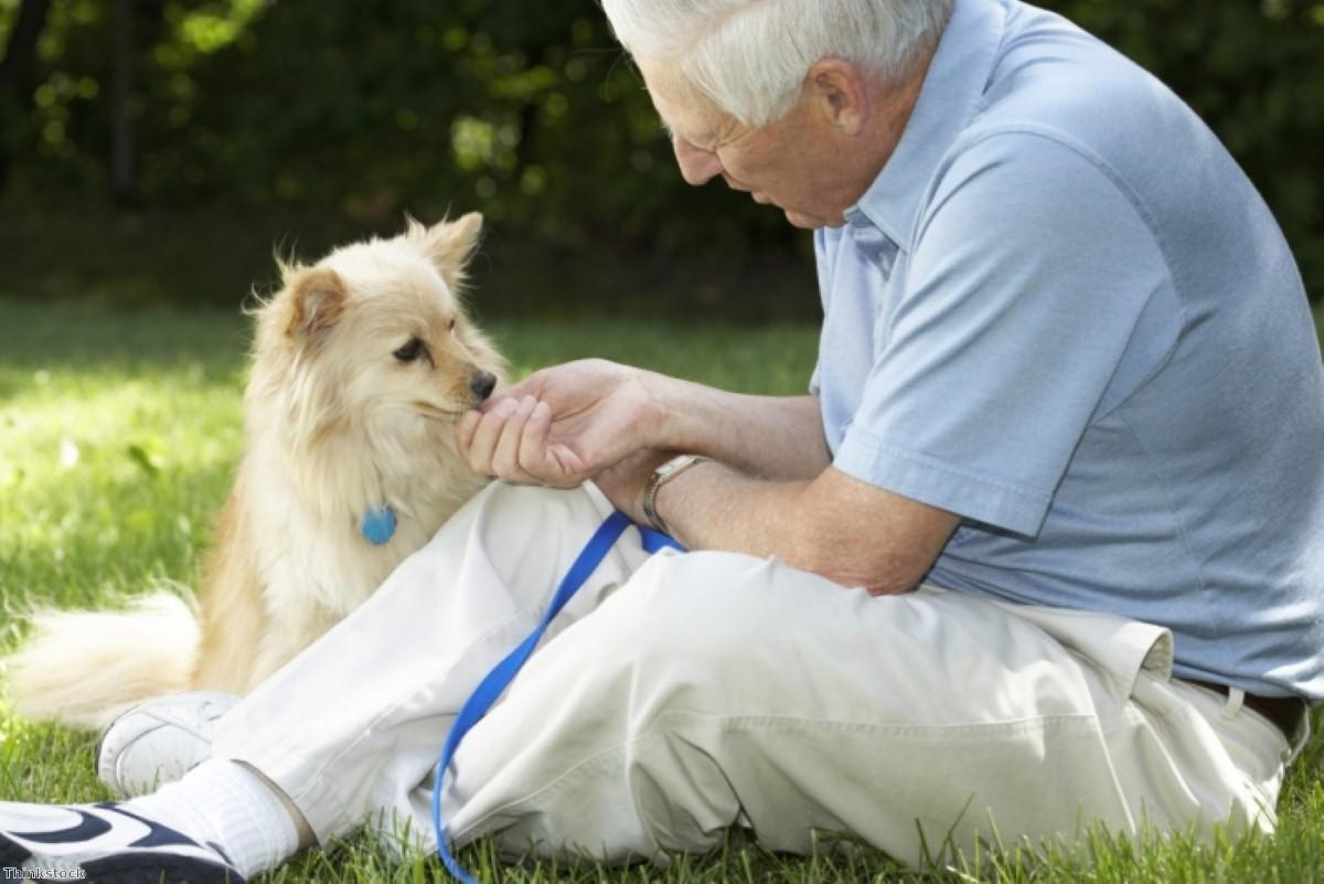 Could pets improve health outcomes?
