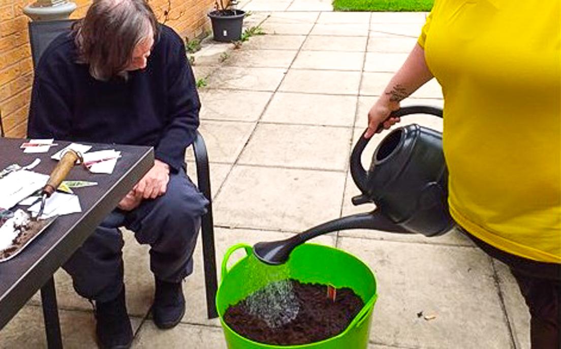 kavanagh gardening