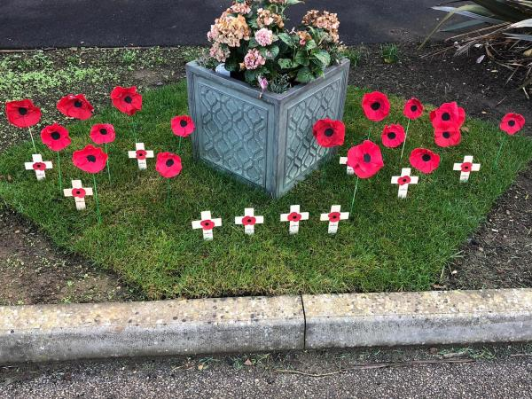 Poppy display for Remembrance Day