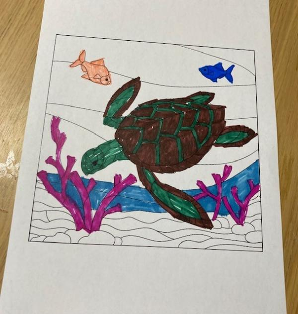 Turtle Day at The Lakes Care Centre