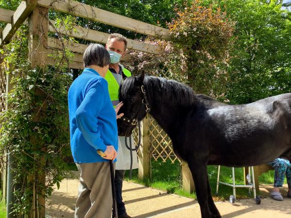 Ponies visited Edwardstow Court Care Centre