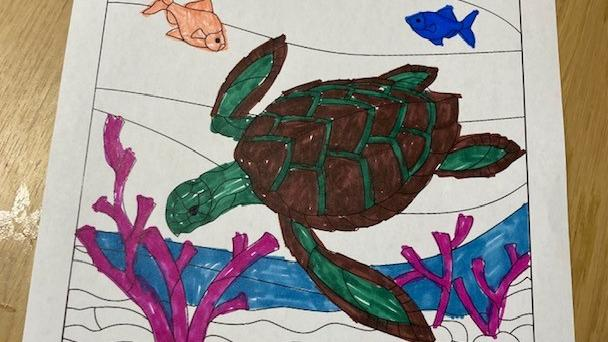 turtle day the lakes