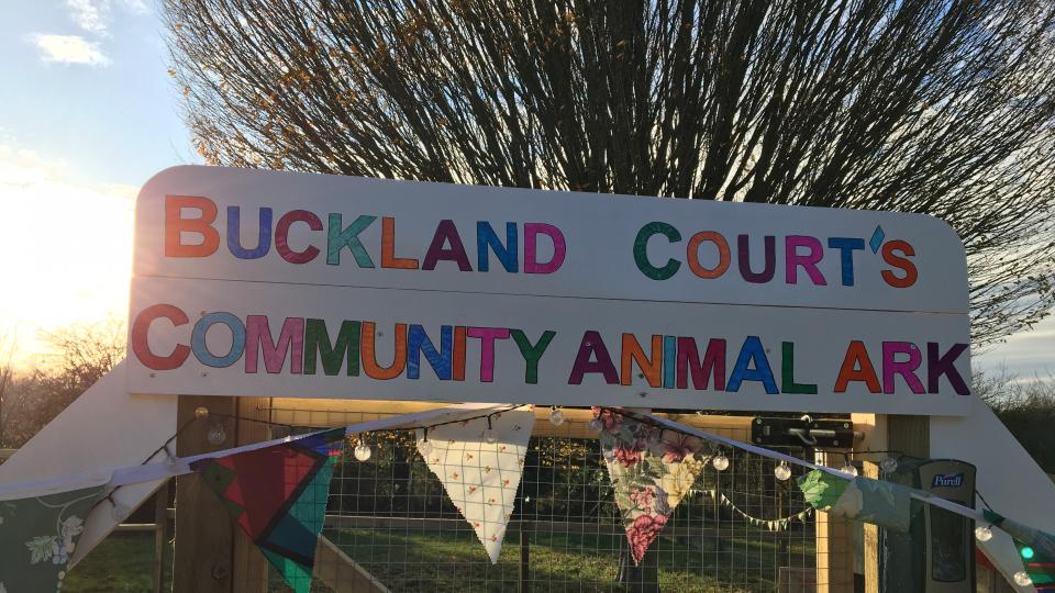 Buckland Court's animal ark
