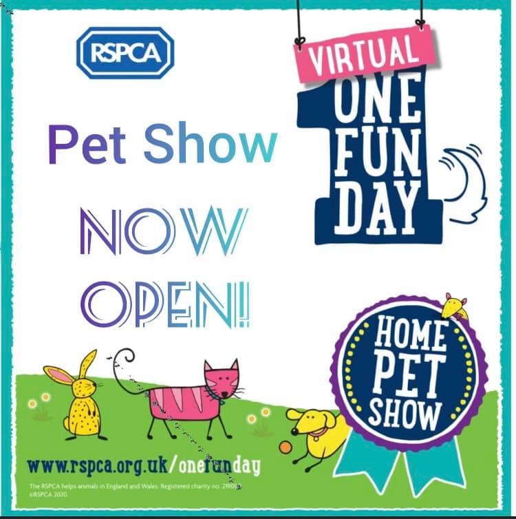 Virtual One Fun Day Derby District Rspca