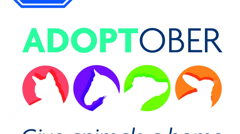 Adoptober