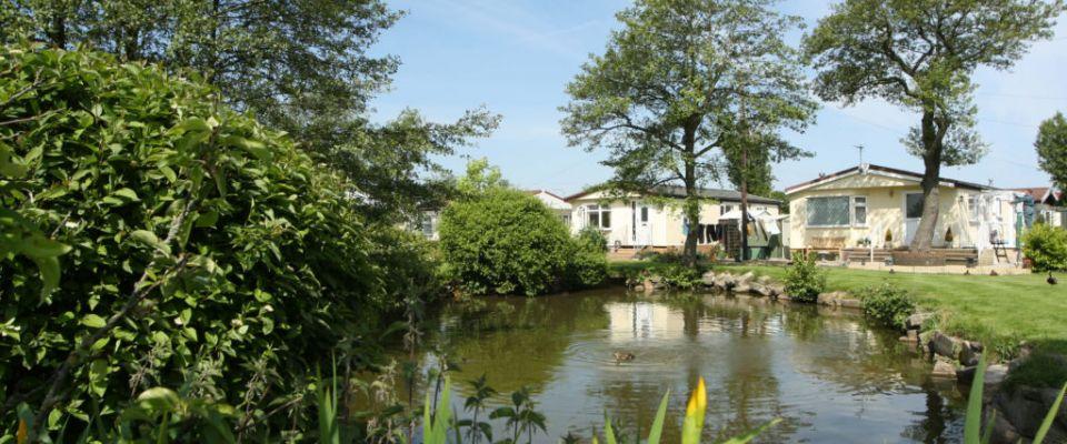 Wrye Vale Park