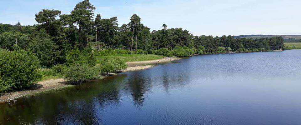 Deneside Lodge Park